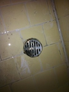 Is the shower drain taking the proper precautions against unwanted pregnancy?
