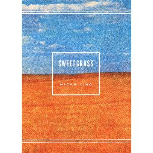 Micah's book Sweetgrass, which I knew I would buy the second I saw the cover